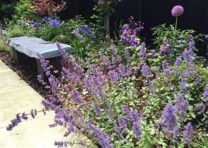 Planting by Allium Designs